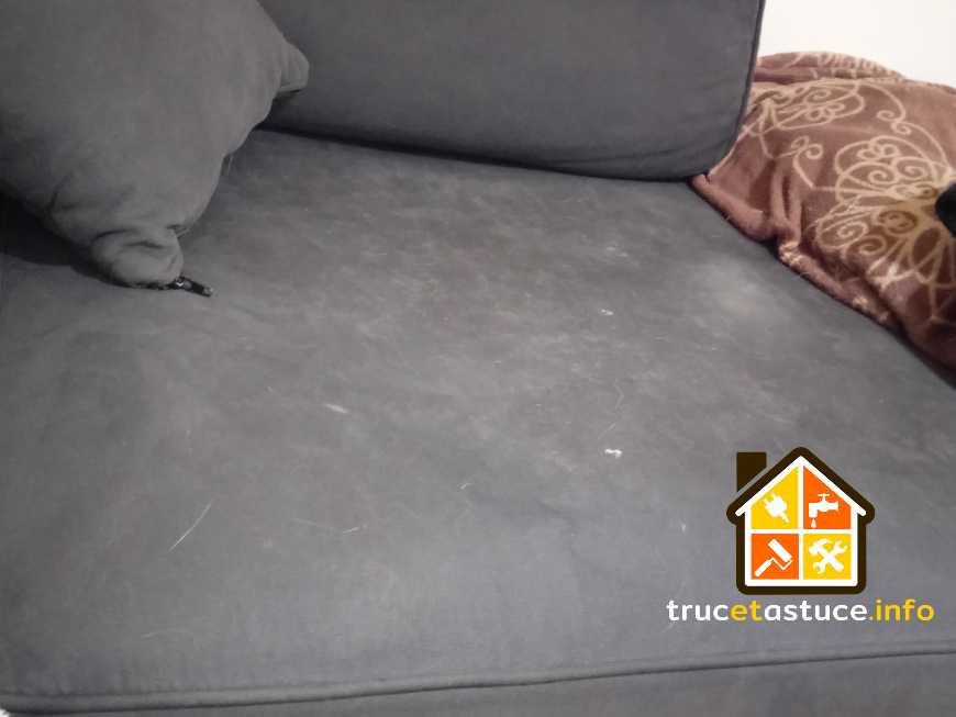 enlever les poils d 39 animaux sur le canap sur truc et astuce info. Black Bedroom Furniture Sets. Home Design Ideas